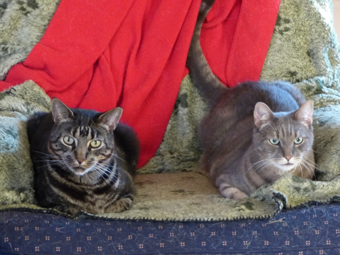Thomas and Hiro on chair