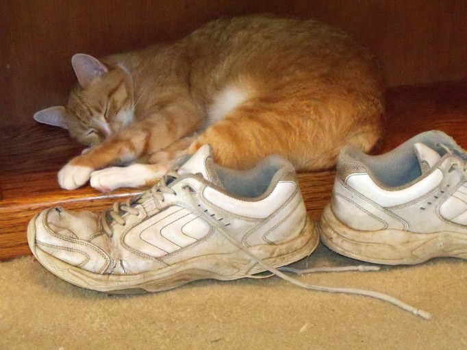 Minh and sneakers