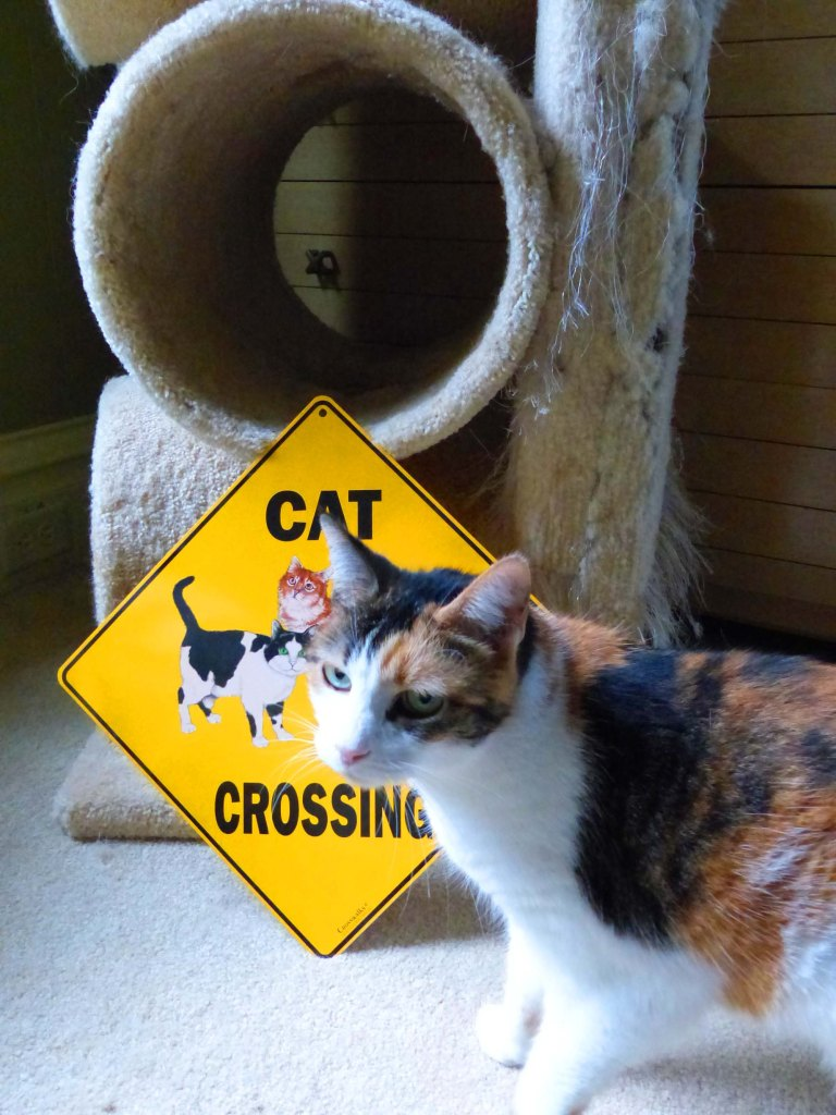 Cat crossing crossing sign