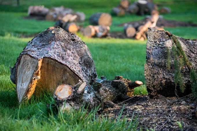 Wood-pile_0006web